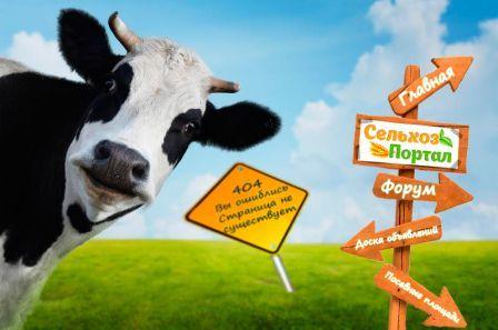 Доска бесплатных объявлений сельское хозяйство доска объявлений ст.каневская